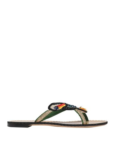 Charlotte Olympia Sandals In Black