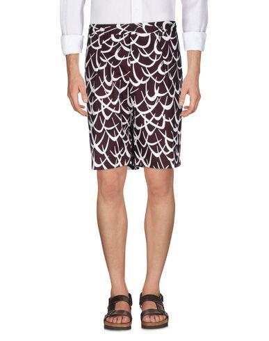 MARNI - 短裤 & 百慕大短裤