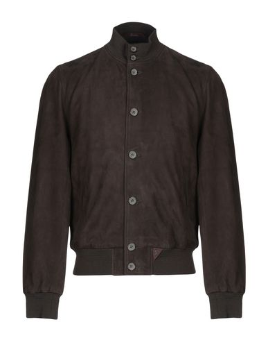 STEWART Bomber in Dark Brown